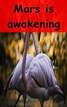 Mars is awakening Volume (Basque Edition)