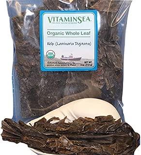 VitaminSea Organic Finger Kelp Seaweed - 4 oz / 112 G Whole Leaf Laminaia Digitata Maine Coast - USDA & Vegan Certified - Kosher - For Keto & Paleo Diets - Atlantic Ocean Sea Vegetables (DG WL4)