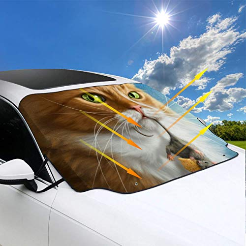 QBahoe Warrior Cat with Mouse in Mouth Funny Cats Car Windshield Snow Cover Sunshades for Windshield Sun Shade Protector Ice Protection Frost Guard Windshield Cover Summer Winter