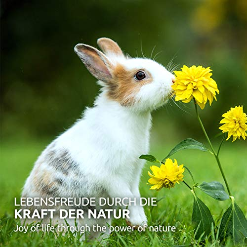 AniForte Natur Nagerfutter 10 Liter u.a. für Hamster, Meerschweinchen, Kaninchen, Chinchilla- Naturprodukt für Nager - 5