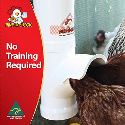 NEU Hühner Futterautomat DINE A CHOOK - 4