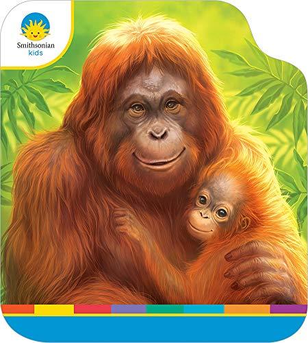 Orangutans: Smithsonian Kids Big Head Board Book