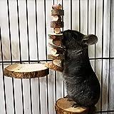Hamster Kauspielzeug Klein Pet Kauspielzeug Apfelholz Kauen Stöcke Natürliche Zahnknirschen Spielzeuge Bio-Apfelstäbchen Kaustäbchenspielzeug Zahnpflege für Kaninchen Chinchilla Meerschweinchen 2PCS