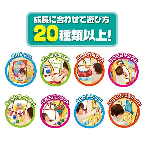頭と体の知育ボールサーカス対象年齢1歳以上遊び方20種類以上ママが見えて安心シリーズハウスに変身長く遊べる