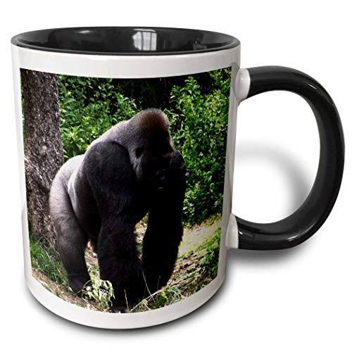 Silverback Male Gorilla Walking Head Down zweifarbige schwarze Tasse, 325 ml, schwarz/weiß