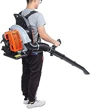 WSNLDY 3 in 1 Leaf Blower Garden Vacuum Shredder, 2-Stroke Petrol Engine, Portable Knapsack High Power Snow Blower Thrower