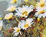 Pintar por Numeros Crisantemo salvaje para Adultos Niños Principiantes,con Pinceles y Pinturas Decoraciones DIY Hogar 16 * 20 Pulgadas Sin Marco