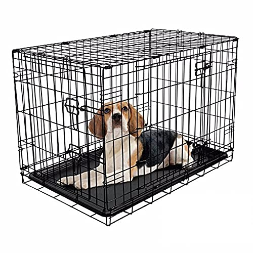 RAC Dog Puppy Cage Folding 2 Door Crate with Plastic Tray Medium 30-inch Black (Medium)