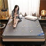 LIKE99 Alfombra de Tatami Japonesa,Plegable Colchón Suelo, Grueso Acolchado Suave Antiescaras Colchón futon Dormir Mat para Dormitorio Alcoba,100x200cm