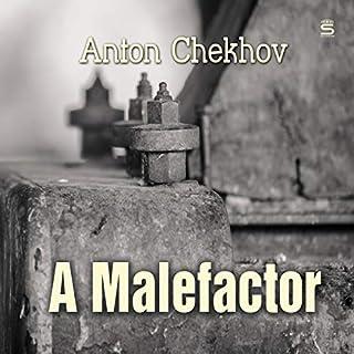 A Malefactor cover art