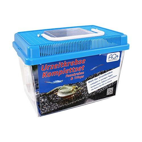 AQ4Aquaristik Urzeitkrebse Starter Set: Triops und Feenkrebse Eier, 2,5 Liter Kunststoff Aquarium mit Zubehör, Futter und Anleitung