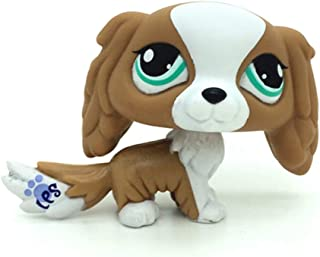 lps brown and white dog