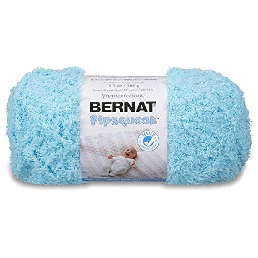 Bernat Pipsqueak Yarn, 3.5 oz, Gauge 5 Bulky, Blue Ice
