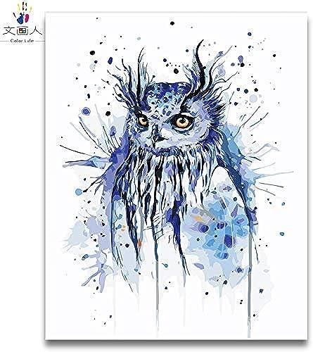 KYKDY diy maßen nach Zahlen Aquarell Tiere Papagei Bild Malerei fliegende V l malt nach Zahlen mit Lackfarben, 0819 Eule, 80x100 kein Rahmen