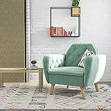Novogratz Tallulah Memory Foam Arm, Light Green Velvet Accent Chair,