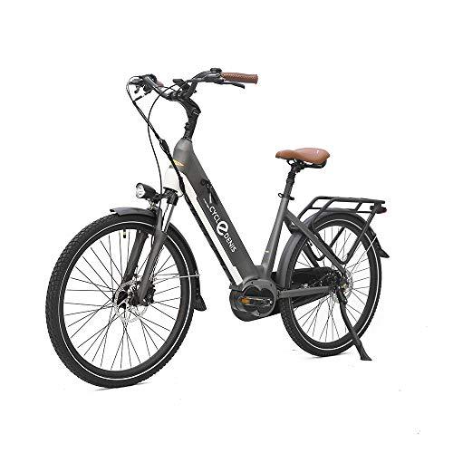 Bicicleta eléctrica Pedelec de 24 pulgadas, 250 W, con batería de iones de litio de 36 V, 13 Ah, para adultos, color gris
