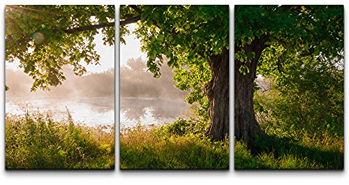 wall26 - 3 Piece Canvas Wall Art - Oak Tree in Full Leaf in Summer Standing Alone - Modern Home Art Stretched and Framed Ready to Hang - 16