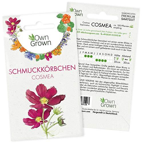 Cosmea Samen Bunt: Premium...