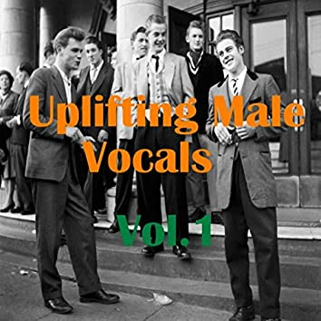 Uplifting Male Vocals, Vol.1