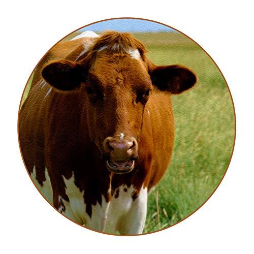 Posavasos Animal Vaca marrón 6 Pack Posavasos de Antideslizante de Doble Cara Diseño único y Lindo Estilo, Protección de Mesa Coasters 11cm