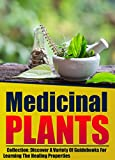 Medicinal Plants: Collection: Discover A Variety Of Guidebooks For Learning The Healing Properties (English Edition)