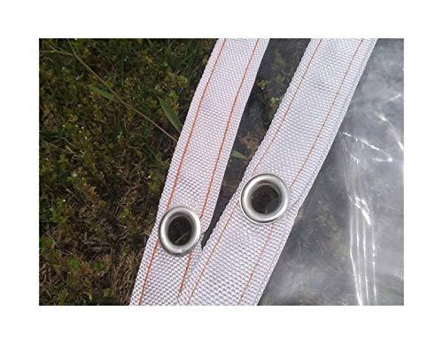 ETNLT-FCZ Lona Impermeable Transparente Cubierta de Planta Transparente Tarpaulin PE Tarpaulin Balcon Borde Envuelto Tarro Claro for el automóvil (Color : Transparent, Size : 1x1.6m)