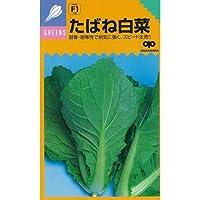 白菜 種 たばね白菜 小袋(約20ml)