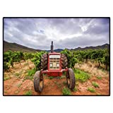 Soft Indoor Large Modern Area Rugs Tractor in a Vineyard Robertson South Africa 565023046 for Living Room Kid Girls Carpets Home Bed 6.5 x 8 Ft