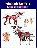 Veterinaria Anatomía Libro de Colorear: Una forma mejor y más fácil de aprender anatomía, libro para colorear de anatomía y fisiología animal ... estudiantes de veterinaria e incluso adultos