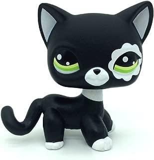 ZAD Littlest Pet Shop Rare Black Short Hair Cat Kitty Animal Figure Tpy LPS #2249