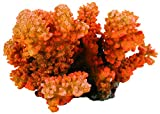 TRIXIE Coral en rama, 12 cm, Peces
