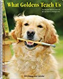 What Goldens Teach Us 2021 Engagement Calendar (Dog Breed Calendar)