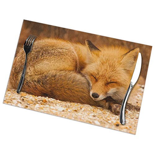 hutaz Sleeping Fox Heat Resistant Table Mats Set of 6 Non-Slip Washable Placemat for Holiday Dining Kitchen Decor Modern Art