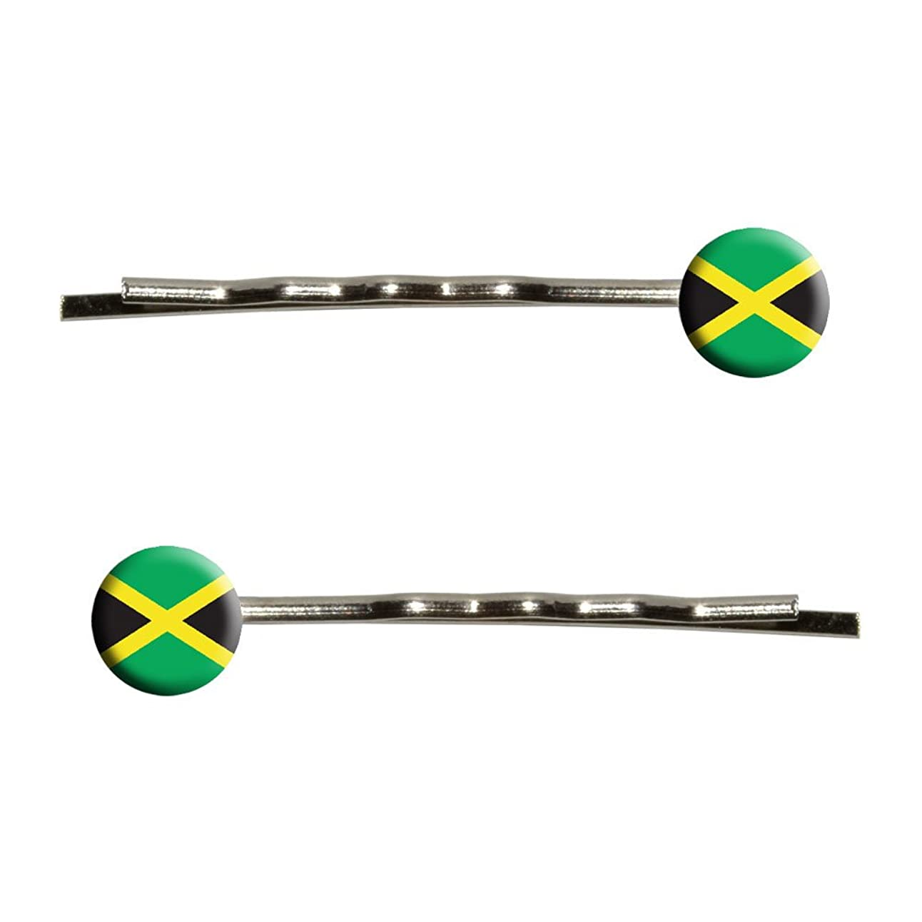 積分結核カメラJamaica Flag Bobby Pin Hair Clips