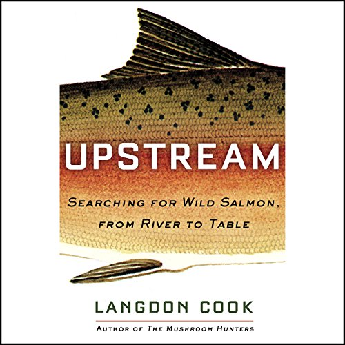 Upstream audiobook cover art