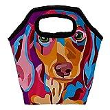 Duchshung - Bolsa de almuerzo para pintura de perro, aislada,...