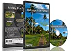 Fitness Journeys - Balinese Rice Fields , for indoor walking, treadmill and cycling workouts