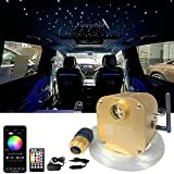FIREWORK Bluetooth 16W Twinkle Fiber Optic Star Ceiling Light Kit with APP/Remote Music Mode RGBW LED Starlight Headliner for Car Home Ceiling Decoration, Mixed 360pcs (0.03in+0.04in+0.06in) 9.8ft
