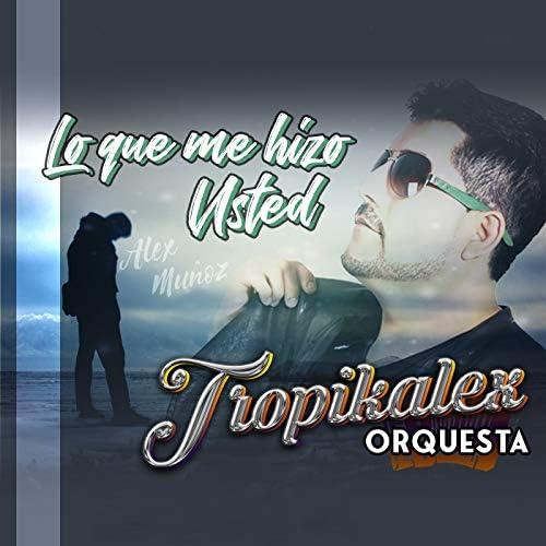 Tropikalex Orquesta & Alex Muñoz