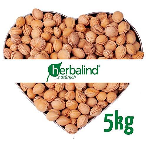 5 kg Kirschkerne in Premium-Qualität von Herbalind - lose Kirschkerne zur Kissenfüllung für Wärmekissen - schonend gereinigt ohne Chemie