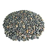 Mexican Beach Pebbles | 40 Pounds of Smooth Unpolished Stones | Hand-Picked, Premium Pebbles for Garden and Landscape Design | Mixed, 3/8 Inch