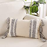 Ailsan Boho Decorative Throw Pillow Cover 12x20 Inch Tribal Striped Tufted Pillowcase Soft Tassles Lumbar Pillow Covers Sham Pillowcases Cushion Covers for Sofa Couch Bedroom Living Room