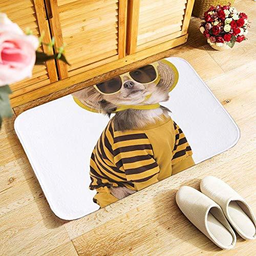 OPLJ Nette Katze Muster Bodenmatte Outdoor-Eingangstürmatte Schlafzimmer Teppich Küche Korridor Türmatte rutschfeste Türmatte A4 60x180cm