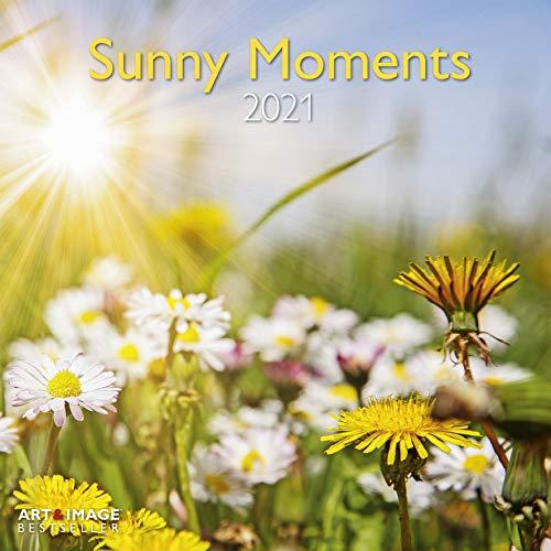 Sunny Moments - Broschurkalender - Kalender 2021 - teNeues-Verlag - Art & Image - Wandkalender mit Platz für Eintragungen - 29,8 cm x 29,8 cm (offen 29,8 cm x 59,8 cm)