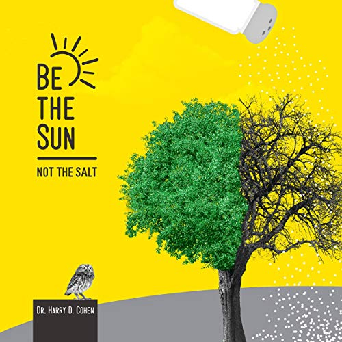 『Be the Sun, Not the Salt』のカバーアート
