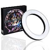 Lumine Shisha LED Light Ring Set mit Edelstahlteller und Akku 22 cm 7 Farbwechsel und 2 Modi