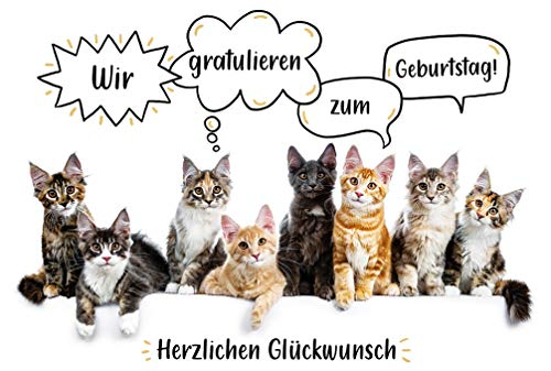 BSB Geburtstagskarte Geburtstagsgrüße Geburtstagswünsche - Katzen - Umschlag weiss, 510977-2