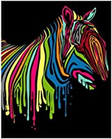 大人のパーソナライズされたデジタル絵画セット 16 × 20 インチ写真カスタム DIY デジタル絵画セット初心者カラーゼブラ (フレーム付き)