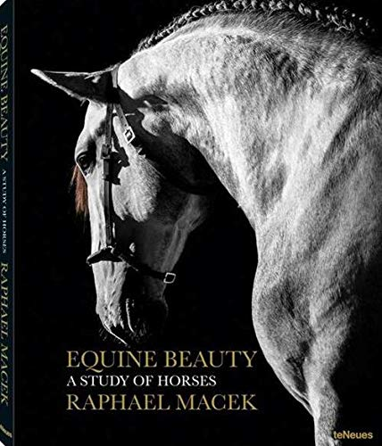 Equine Beauty (Photography)