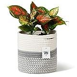 "POTEY 700601 Cotton Rope Woven Plant Basket Modern Woven Basket for 7"" Flower Pot Floor Indoor Planters,Storage Organizer Basket Rustic Home Decor, White Grey Stripes 8""x 7.5"""